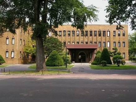 大学 北海道 教育